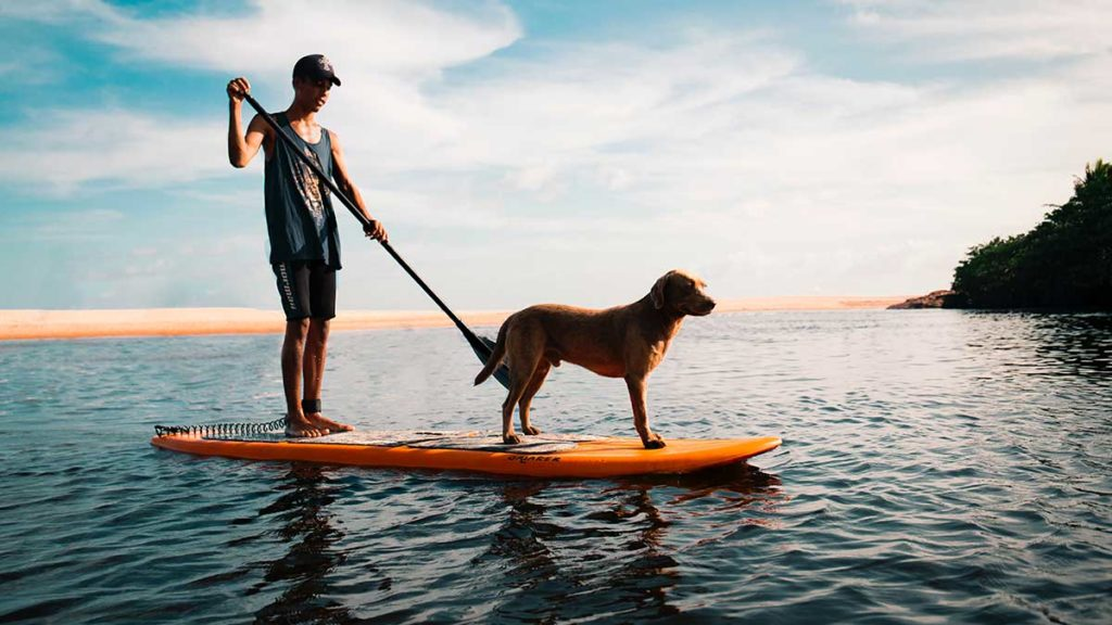 ejercicios-paddle-surf
